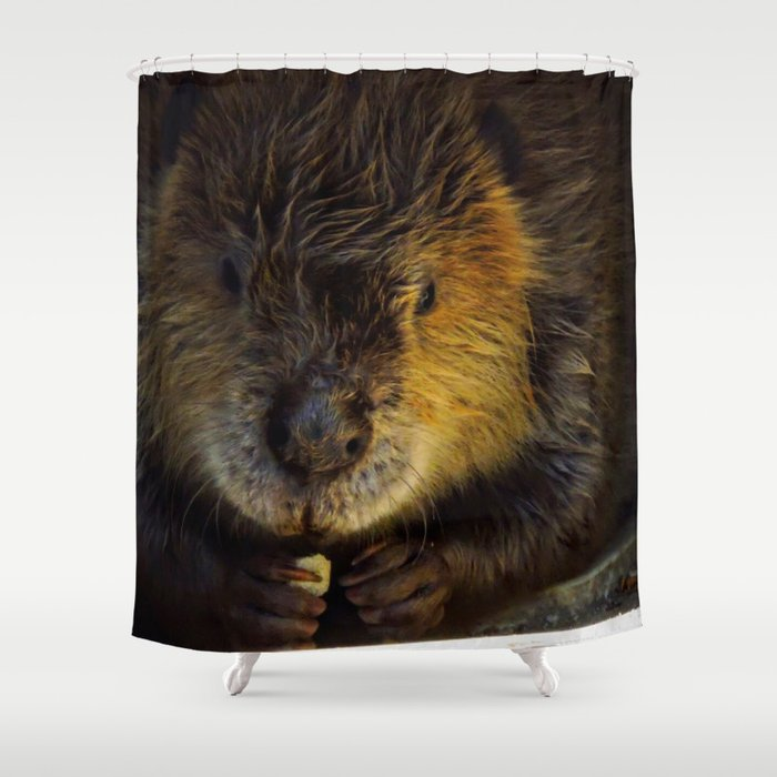 Beaver Fever Shower Curtain By Zlaartdesigns Society6