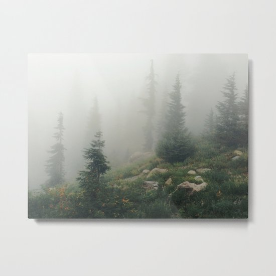 Mt Hood National Forest Metal Print