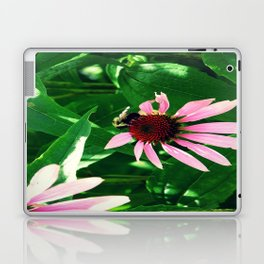 Polinize Laptop & iPad Skin