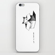 Cat in the box iPhone & iPod Skin