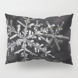 Two Snowflakes Pillow Sham