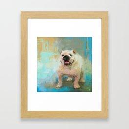 White English Bulldog Framed Art Print