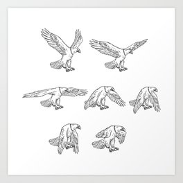 Bald Eagle Flying Drawing Collection Set Art Print