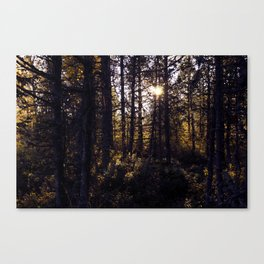 Tryin hard to understand the meaning that you'll see in me Canvas Print