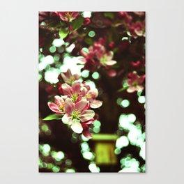 vintage flowers and birdhouse Canvas Print