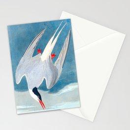 Arctic Tern Bird Stationery Cards