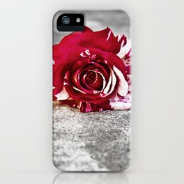 Variegated Rose on Concrete iPhone Case