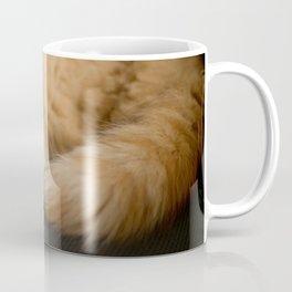Fluffy Ginger Cat On Black Coffee Mug