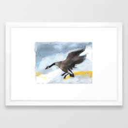 Canada Goose Landing...digital sketch Framed Art Print