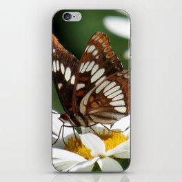 Sweet Simplicity iPhone Skin
