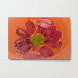 flower in orange pool Metal Print