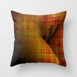 PETITOISEAU Throw Pillow