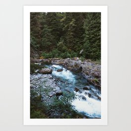 River Running through the Pacific Northwest Rainforest Art Print