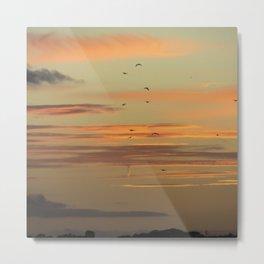 Sunset Migration Metal Print