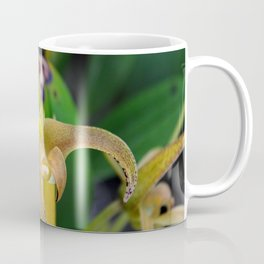 Golden Epidendrum Coffee Mug