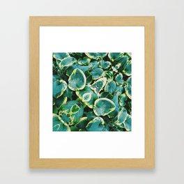 50 Shades of Green (7) Framed Art Print