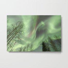 The Arctic Phoenix Metal Print