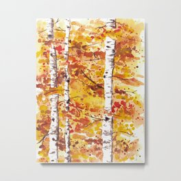 Fall Birch Trees Metal Print