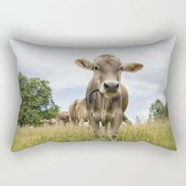 Brown Swiss Heifer Rectangular Pillow