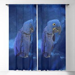 Hyacinth Macaw Blackout Curtain