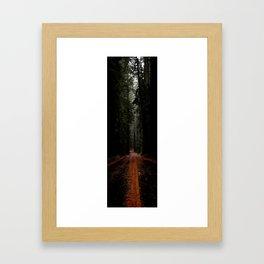 Avenue of the Giants - Vertical Panarama Framed Art Print