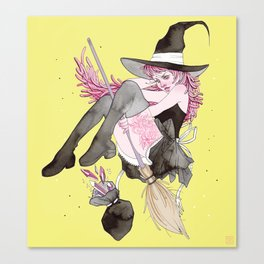 witch and gems Canvas Print