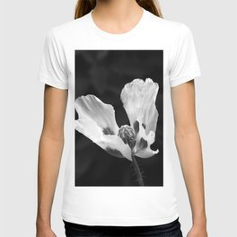 Quivering poppy T-shirt