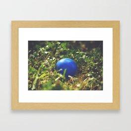 Jakoby's ball Framed Art Print