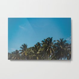 Vibrant blue skies above palm trees in Costa Rica during summer Metal Print