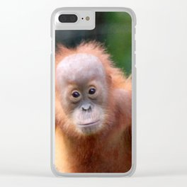 Orang Baby 519 Clear iPhone Case