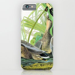Mallard Ducks - John James Audubon iPhone Case