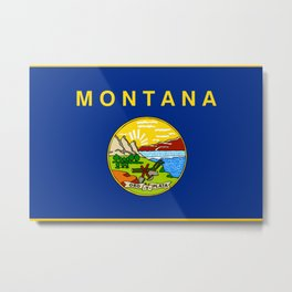 Montana State Flag Metal Print