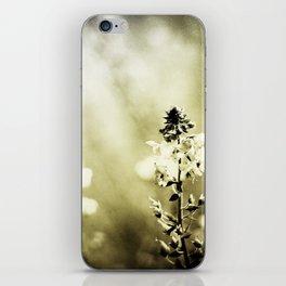 Blur Memories iPhone Skin