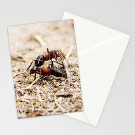Ants 1 Stationery Cards