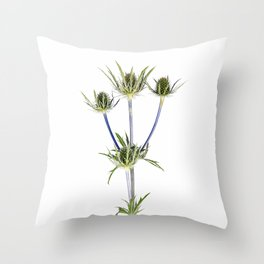 Milk Thistle Throw Pillow