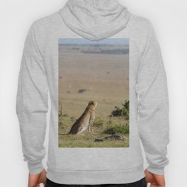 Two cheetahs on the look out Hoody