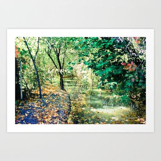 Hidden Autumn Creek Art Print