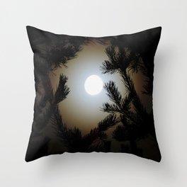 Pine Frame Throw Pillow