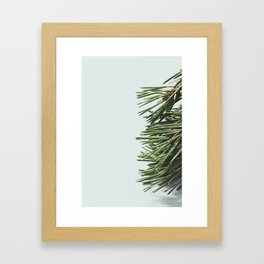 Forest - Pine 6 Framed Art Print