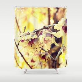 Winter ornament Shower Curtain