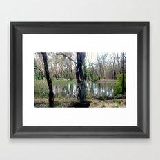 Reflecting after a bush Fire Framed Art Print