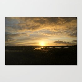 Evening gold Canvas Print