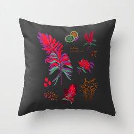 INDIAN PAINTBRUSH Throw Pillow
