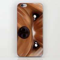 yorkie iPhone & iPod Skins featuring Yorkie face by Mario Laliberte