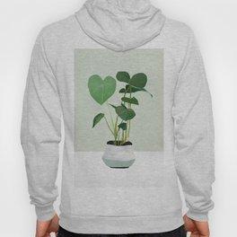 Plant 3 Hoody