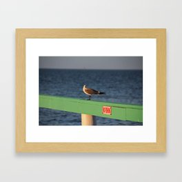 What Do You Mean No Fishing? Framed Art Print