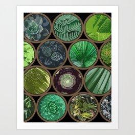 Green Garden Windows Art Print