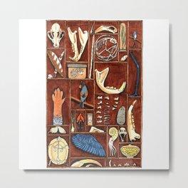 Curious Cabinet Metal Print