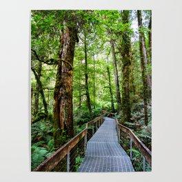 Rainforest Gallery, Warburton, Victoria Poster