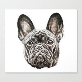 French Bulldog dog Canvas Print